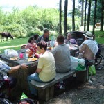 Bizi Berria 13 juin 2014 Picnic Irun 034