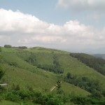 Bizi Berria 13 juin 2014 Picnic Irun 085